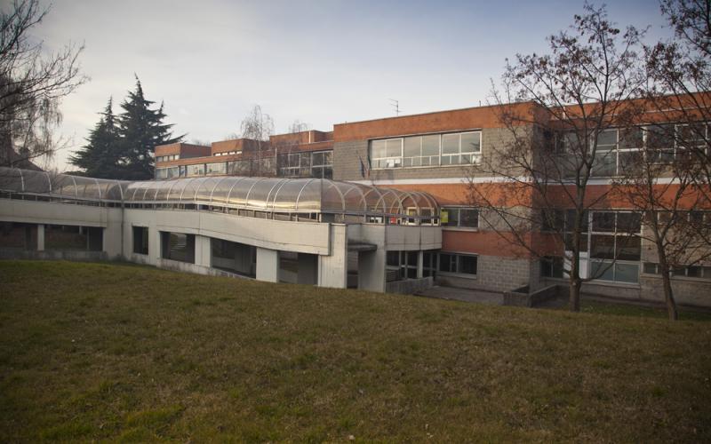 Scuola Primaria A. Borghi